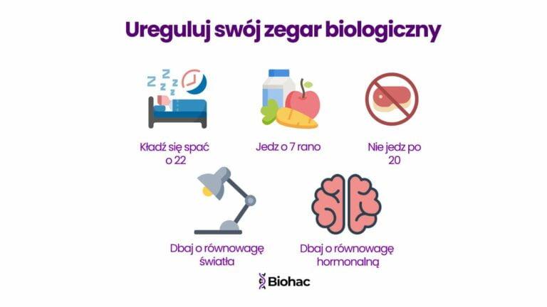 zegar biologiczny snu regulacja jak ustawić porady